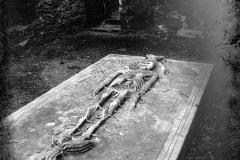 Stamullen Cadaver Stone