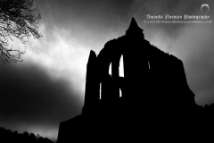 Gothic Horror Abbey