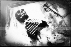 Greyfriars Skeleton Memento Mori