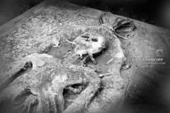 Stamullen Cadaver Grave